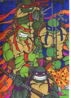 Turtles by JeffyP
