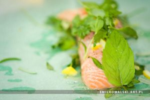 salmon with herbs by KowalskiEmil