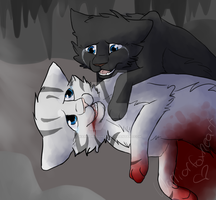 Feathertail's death -redone- by warriorfoxheart