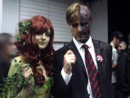 Poison Ivy and Two Face MCM by AquaChaser