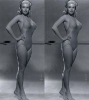 3d Jayne Mansfield Grey Swimsuit by 3dpinup