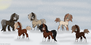 All my Stallions by michelle222