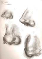 Noses Sketches by AshleySexyPants69