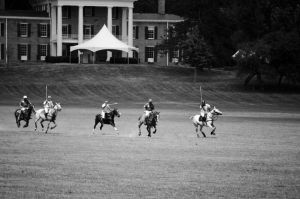 Polo at the Mansion by Cinestress