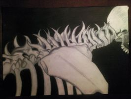 Spine bones charcoal drawing by CalebSlabzzzGraham