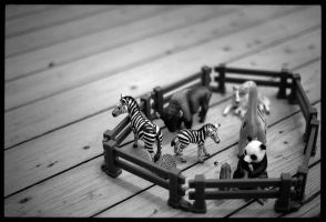 Mini Zoo by pyros