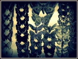 The Silence of the Moths by czmartin
