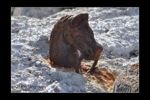 Buried Horse Hitch by FairieGoodMother