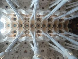 ceiling of Sagrada Familia by remmy77