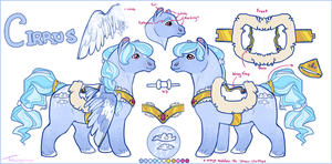 Cirrus Character Sheet by tricksparrow