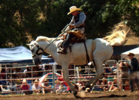 Rockley Rodeo 4 by engaged-vacancy