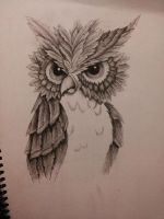 2013-02-15 20.26.23h by heidianne