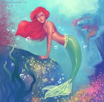 Ariel by svyre