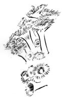 Illustration - Line triptych - Anemones by TheLipGlossary