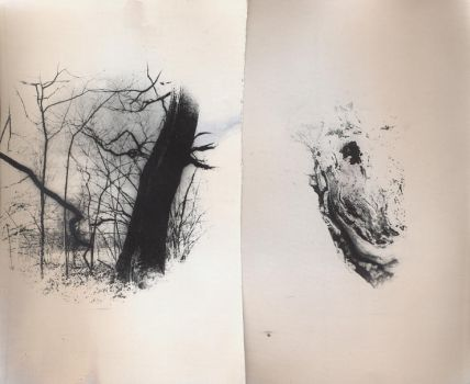 diptych by andrewpershin