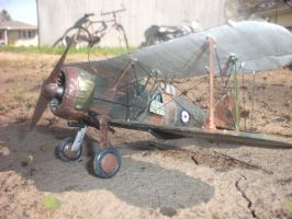 Gloster Gladiator completed by MiGpilot25