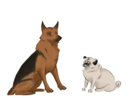 Judgmental Dog Concept 1 by MudgetMakes