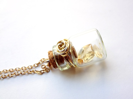 Bottle Beauty Necklace - Silver Gold by WaterGleam