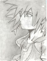 Sora Revisited by Midna-hime