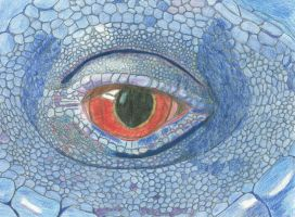 Lizard eye by WacomDragonArtist