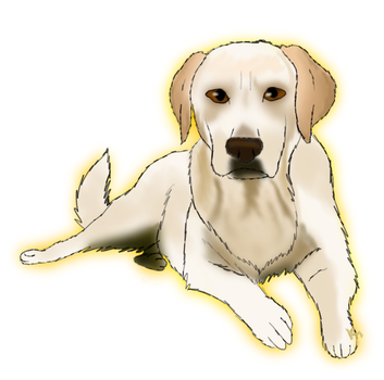 Yellow lab by willowleaf11