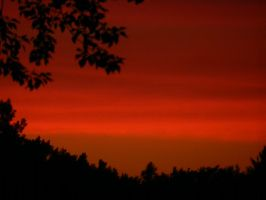 A Blood Red Sky by FrankCampo