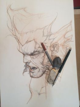 Wolverine Lucca 2014 commission by simonebianchi