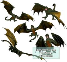 TW3D The Wyvern by TW3DSTOCK