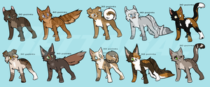 Cat Adoptables by BettaRae