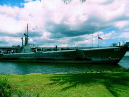 Pearl Harbor I by ElevenOrchids