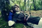 Link Cosplay #2 by Laovaan