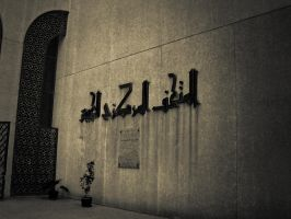 Military Museum DZ by drouch