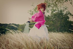 Hiten Mitsurugi side ways slash! by freckledsmile