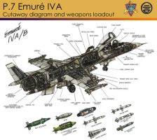 P.7 Emure - Cutaway by contrail09