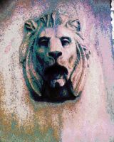 Lion by Germanicus-Fink