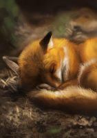 Fox sleepy by GaiasAngel