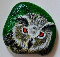 Owl - Rock Painting by Annamoon77