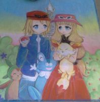 Pokemon X and Y Chalk Art by Risocaa