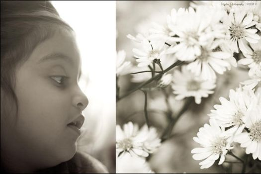My Blossom by IbrahimZen