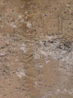 Cement texture [2] by thatguyfromabove