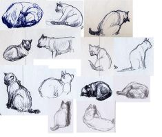 Sketches 1 by lennan