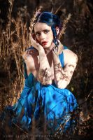 Blue Silk Sheathe 11 by MordsithCara