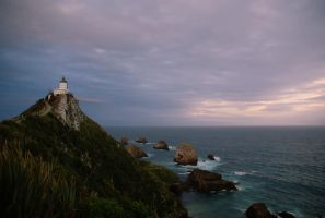 Week 17: Nugget Point by StoneE608