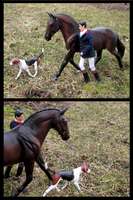 Breyer - Sunday Outing by The-Toy-Chest