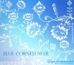 Blue Cornflower by Lileya