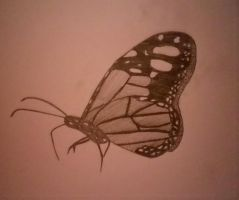 butterfly. by mangagal1