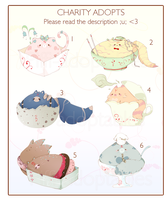 [CLOSED] ADOPT 125 - Purrfect Life Charity JAMMY by Piffi-adoptables