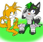 PC shadz and tails always talking by HaleyxH