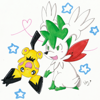 .Skymin and Gizamimi Pichu. by Ishisu