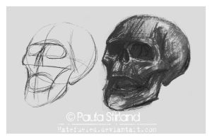 Structural Skull by hatefueled
